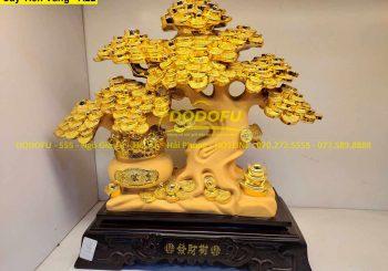 cây tiền vàng phong thủy